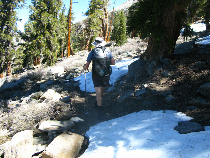some patches of snow along the PCT