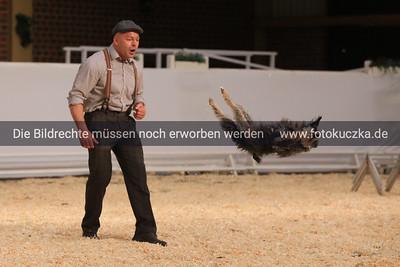 02.02.2014 Wolfgang Lauenburgs Hundeshow