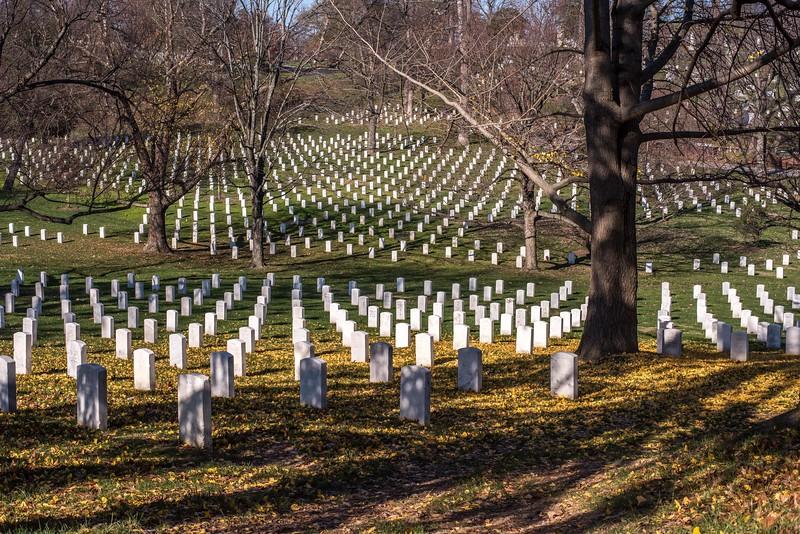 Washington DC_December_2015-77.jpg