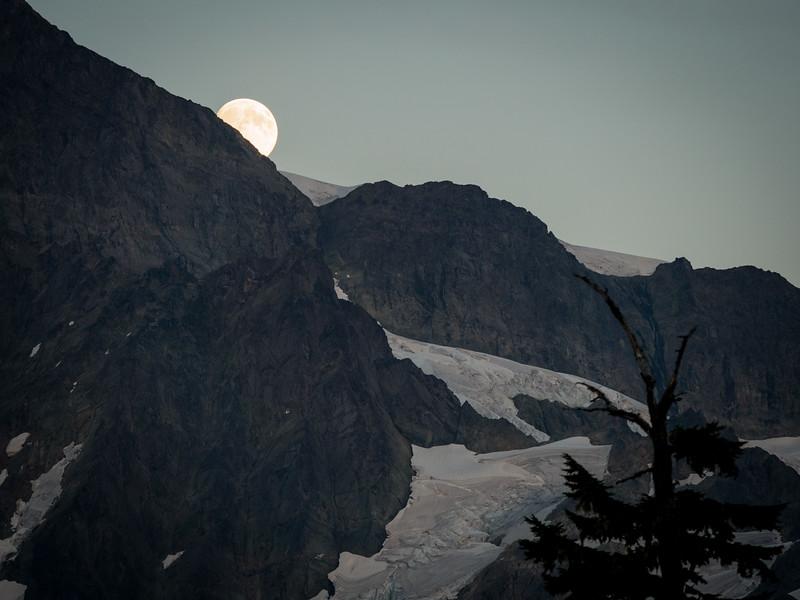 Mt. Baker-3.jpg