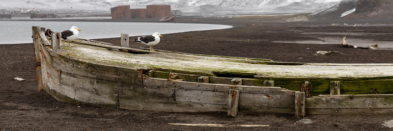 2019_01_Antarktis_02189.jpg