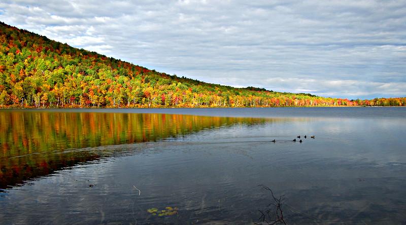 Lower South Branch Pond.