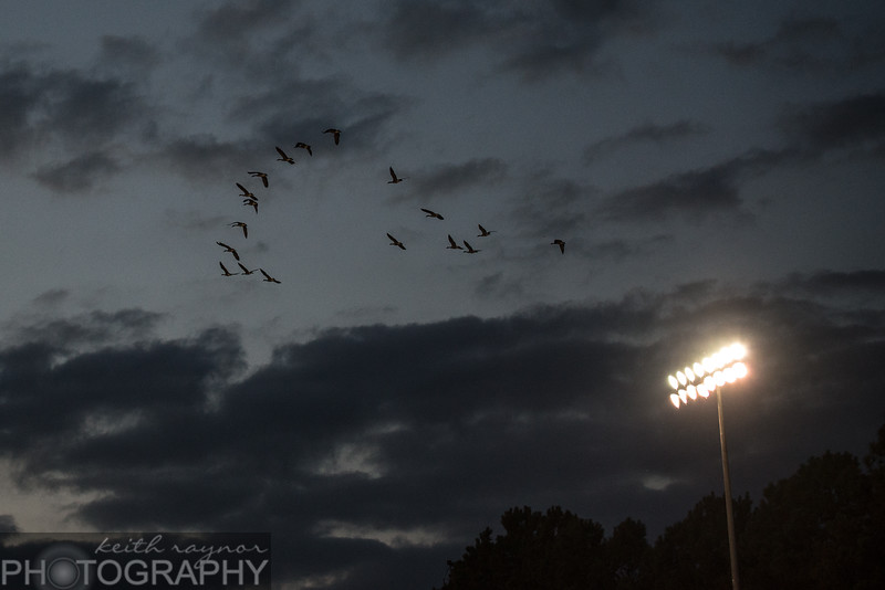 keithraynorphotography southernguilford ragsdale football-1-36.jpg