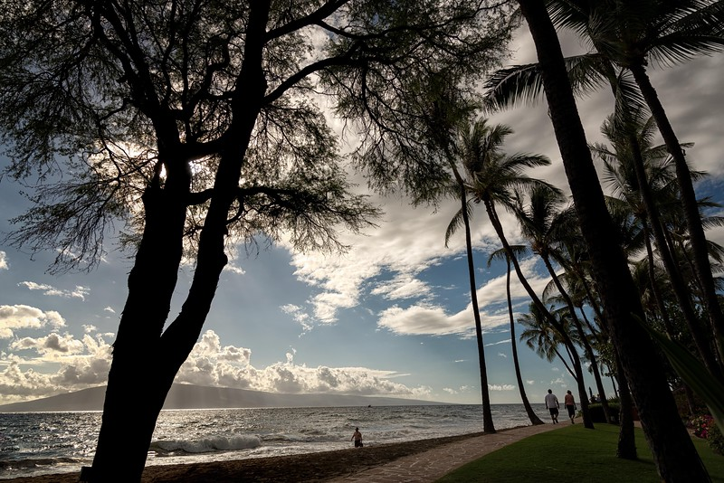 2015-02Feb01-Hawaii-162-Edit-Edit-Edit-Edit.jpg