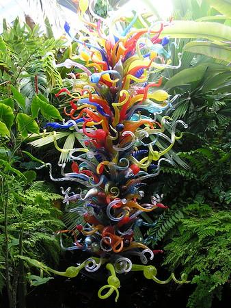 Botanicals: Chihuly Gardens