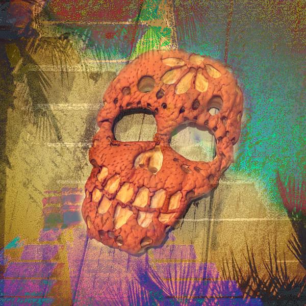 Tropical Skull Composite