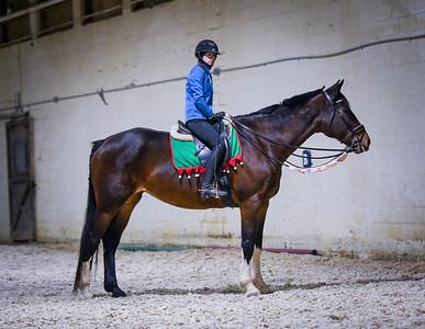 Shoreline Equestrian Holiday Horse-Tacular 12/20/19