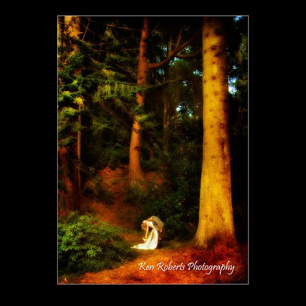 aldourie woods.jpg
