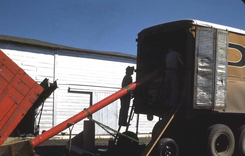 ARS050.  Grain truck - 1946‡.jpg