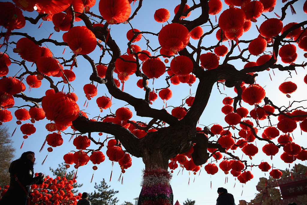 . A Visitor passes the trees decorated with red lanterns at the Spring Festival Temple Fair for celebrating Chinese Lunar New Year of Horse at the Temple of Earth park on January 30, 2014 in Beijing, China.  (Photo by Feng Li/Getty Images)