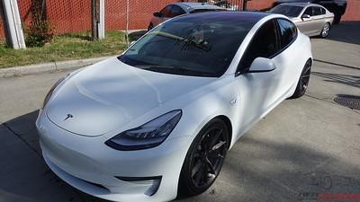 Tesla Model 3 - Pearl White Multi-Coat (5)