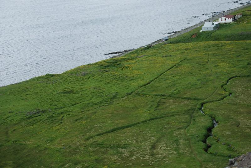 Túnin við Hornbæina.