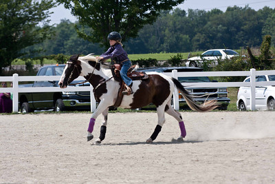 Wyoming County Roundup Pole Bending Horses JR