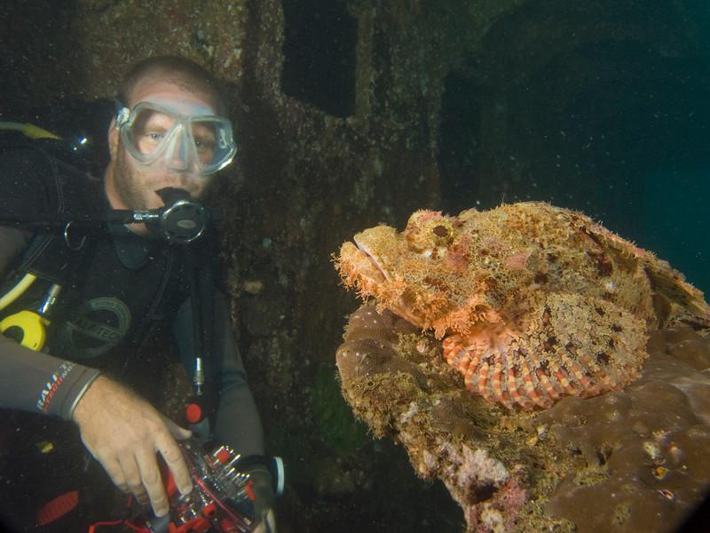 wilco and scorpian fish.jpg
