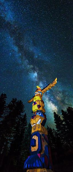 Martis Camp Totem Milkyway