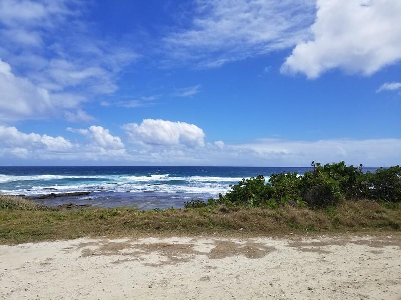 Barbados (19).jpg