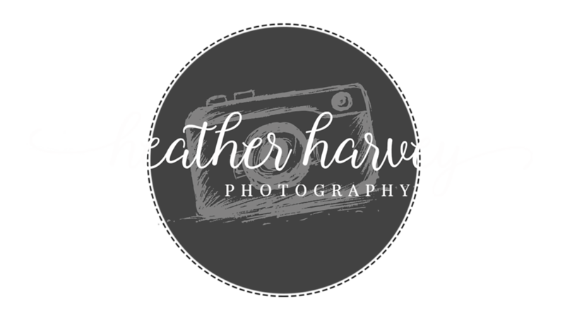 Heather Harvey Photography Logo - Camera 7x4.png