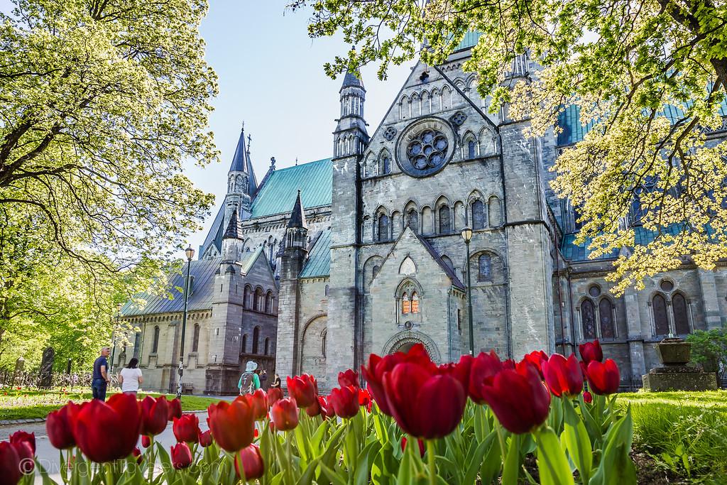 Trondheim Norway - Nidaros Cathedral - Lina Stock