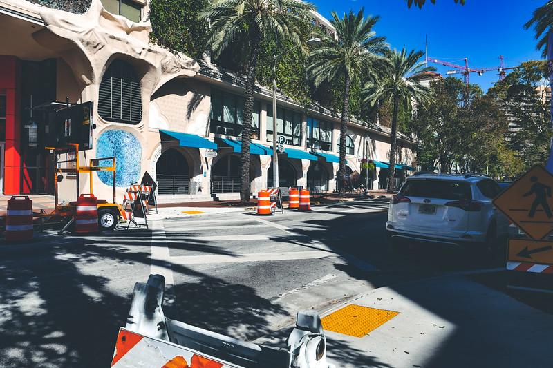 Coconut Grove street