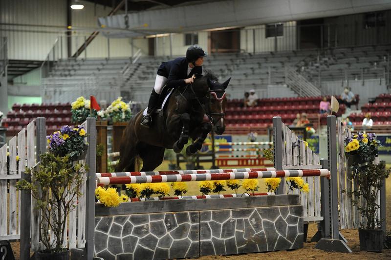Horse show (39).jpg