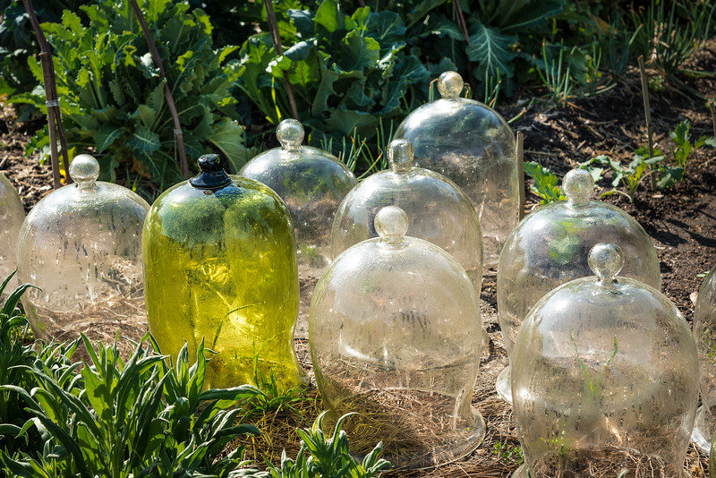 18th Century Glass Dome Greenhouses