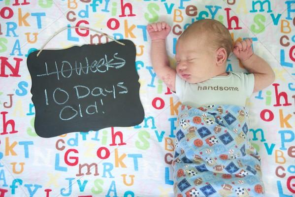 Braden Aaron - Newborn
