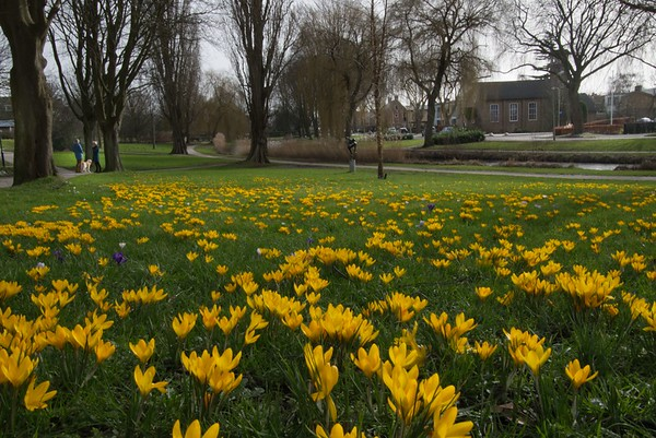 Lente in Zoetermeer