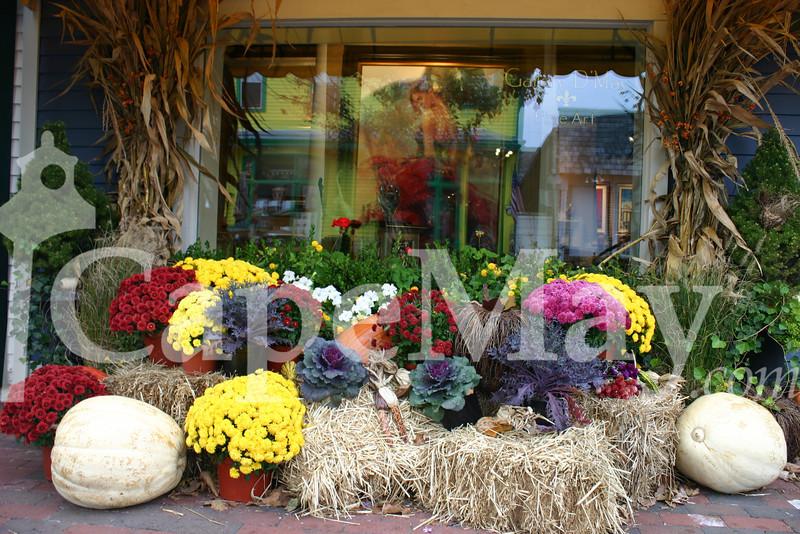 Oct_26_2011 017.jpg