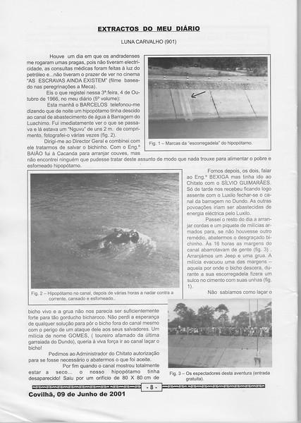 Hipopotamo na Barragem 1