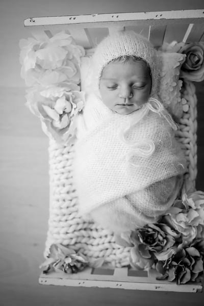 bw_newport_babies_photography_hoboken_at_home_newborn_shoot-5290.jpg