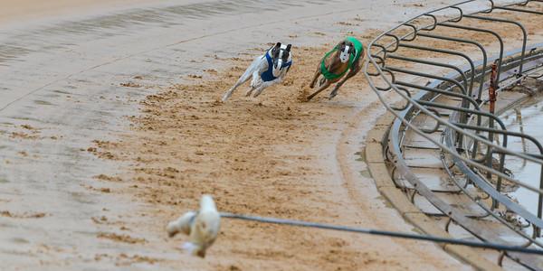 Race 71