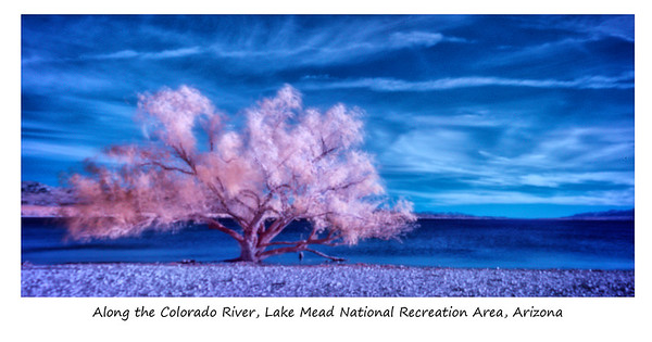 Color IR Workshop