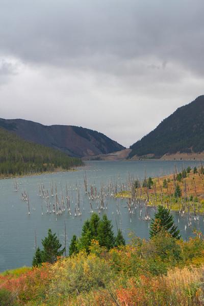 02_Quake Lake_Montana-1.jpg