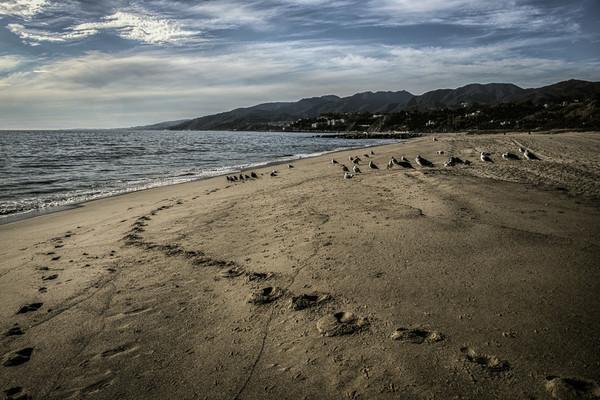 November 7 - Footsteps.jpg