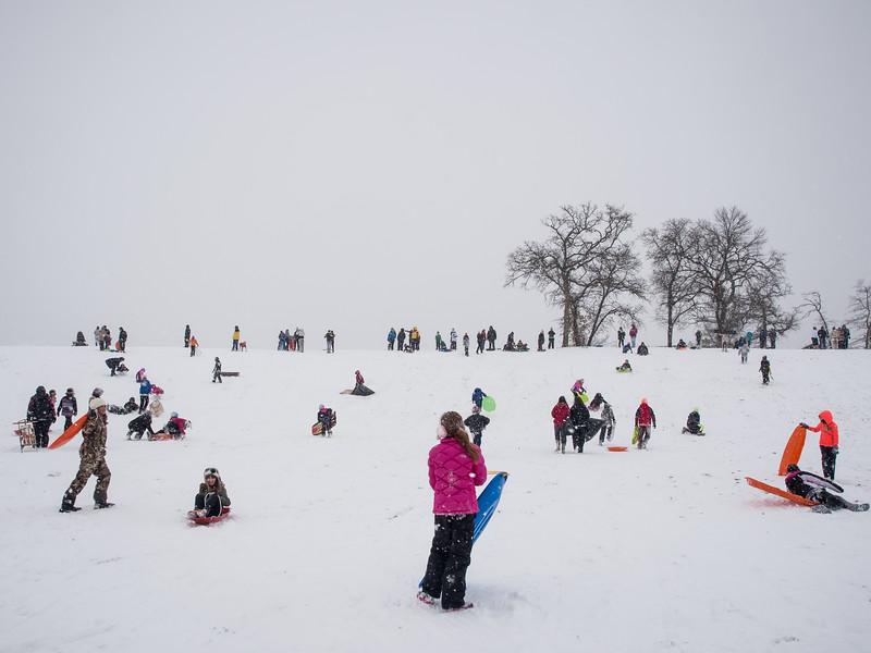 Snow Days 2015-2270299.jpg