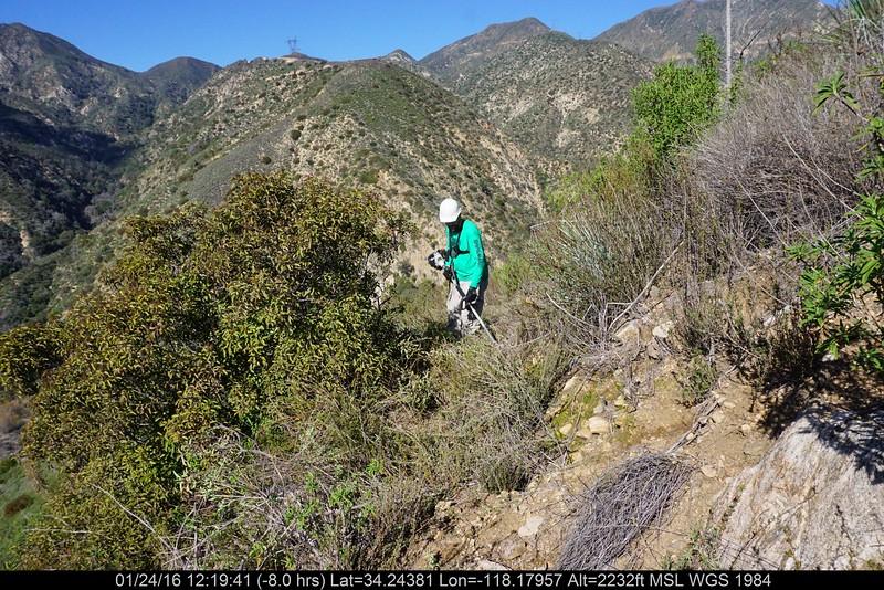 20160124014-Ken Burton Trailwork.JPG
