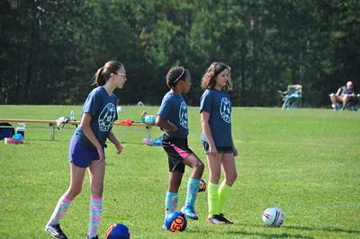 Soccer Willow Game VI