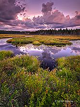 Ontario Landscape