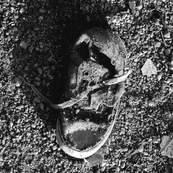 Old shoe.jpg