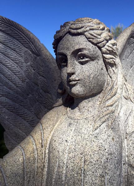 Arno angel.jpg