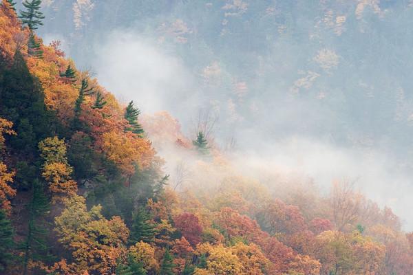 Letchworth (Fall 2006)