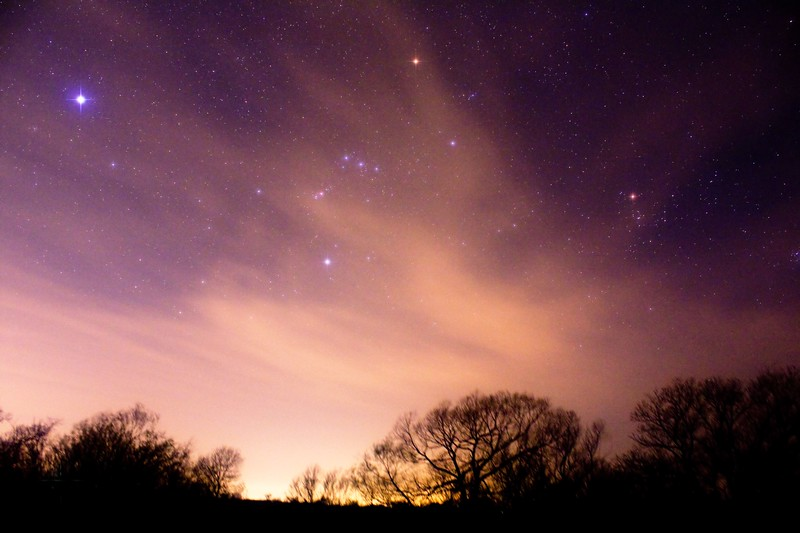 Orion over the Manning Ranch (2).jpg