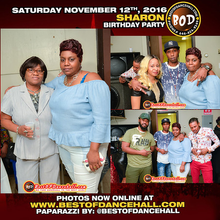 11-12-2016-BRONX-Sharon Birthday Party