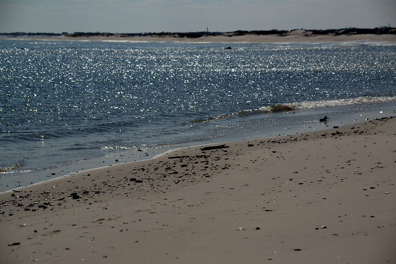 Barnegat Light 23 03_17_19.jpg