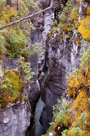 Marble Canyon - July 2009