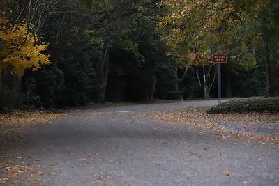 10 Miler Course