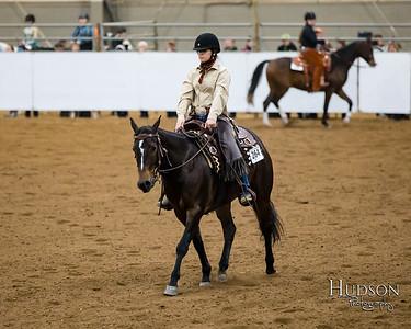 58 Ranch Horse Pleasure
