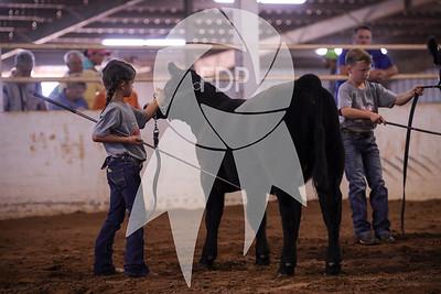 Cattle Ringshots