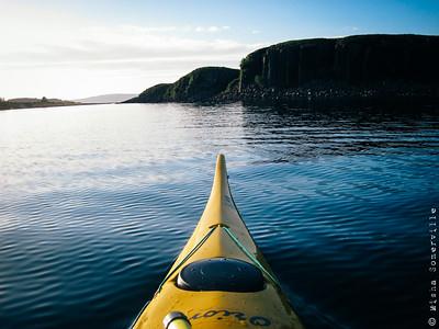Staffa and Treshnish Isles August 2015