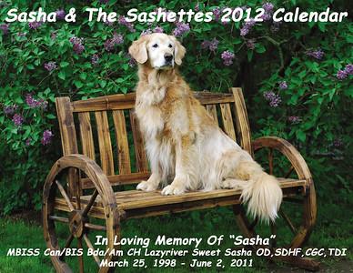 Sashette Calendar 2012